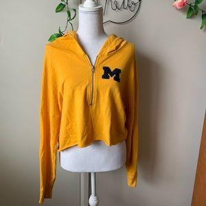 PINK • Michigan Wolverines Cropped Hoodie